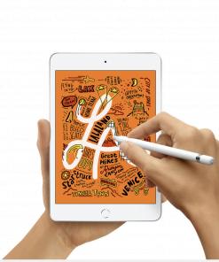iPad y SmartWatch